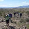 Hiking group traversing Palo Verde Wash