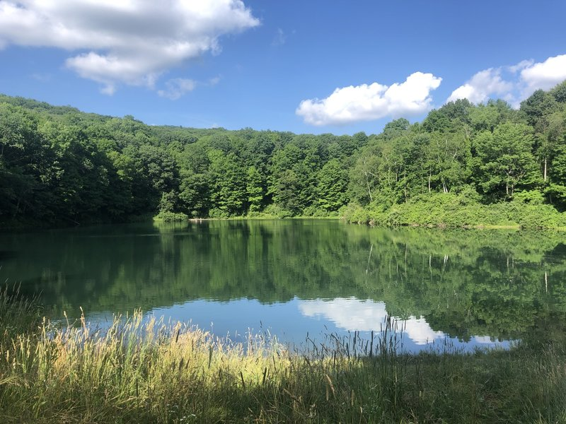 Iron Mine Pond
