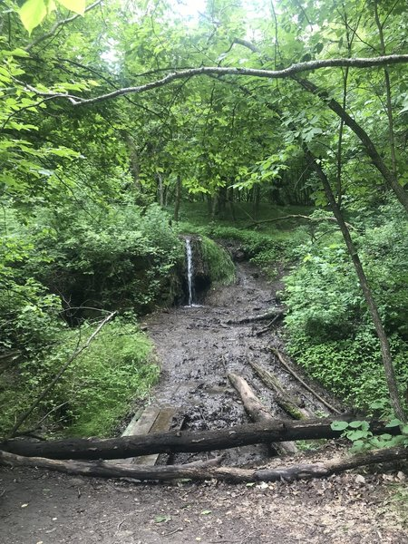 Though the mosquitos were fierce, this was a beautiful hike on the 4th of July, 2019. I appreciated the destination point of the waterfall.
