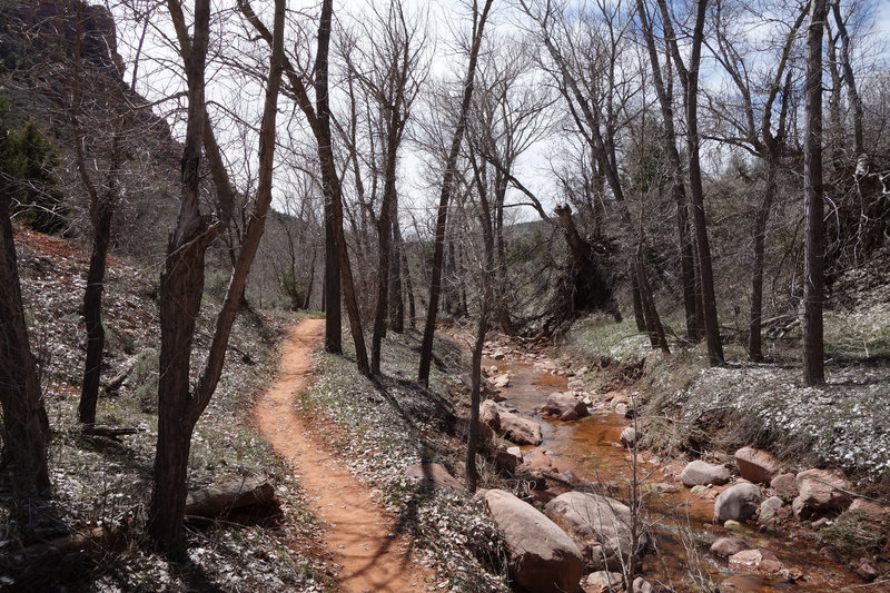 Early spring in Kolob Canyon