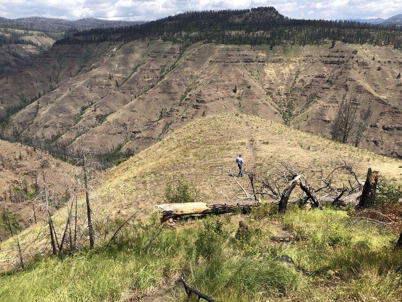 View north below trailhead