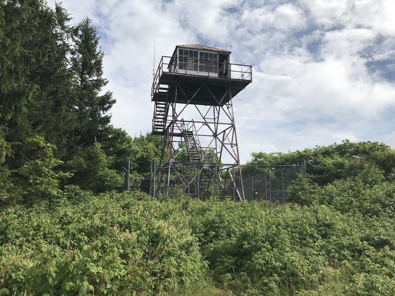 Fire Tower on Elliott's Knob