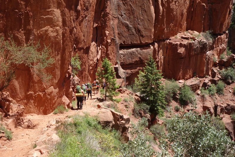 Backpacking group descending the North Kaibab trail