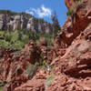 Hiker with a view on the North Kaibab trail