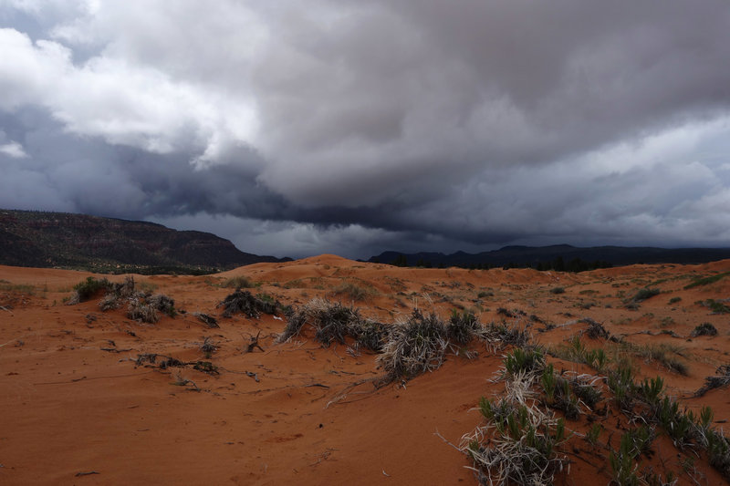 Hail storm approaching Coral Pink Sand Dunes SP from the southeast