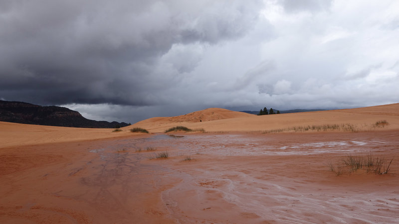 Hail storm at Coral Pink Sand Dunes SP