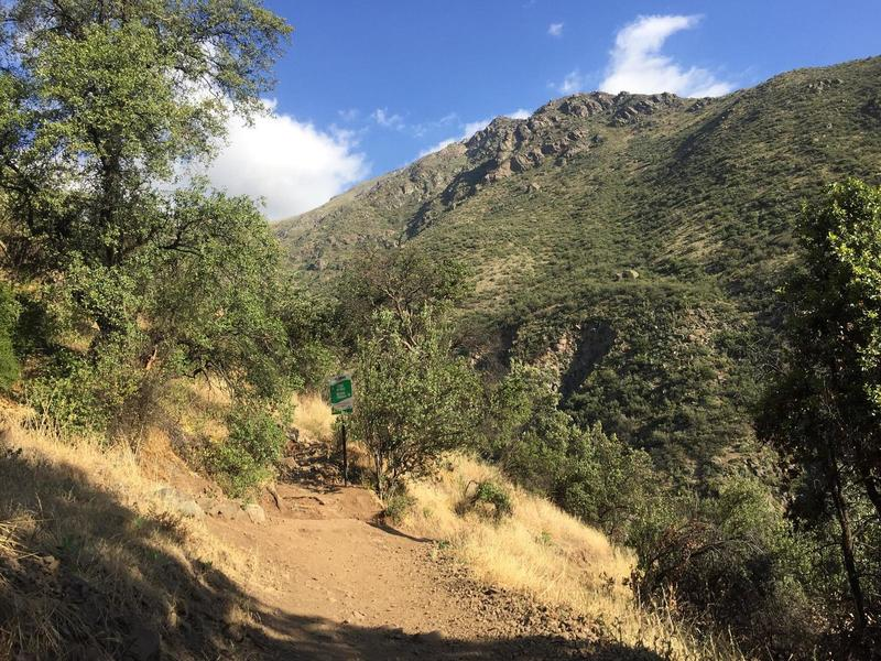 Beginning of the Cerro La Cruz Trail.