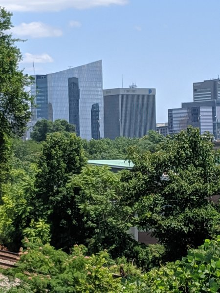 Downtown Richmond from North Bank.