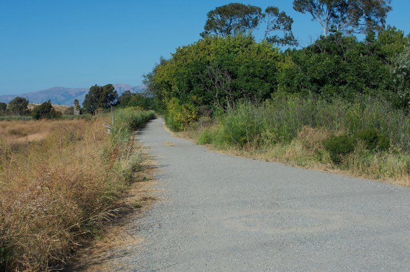 When the trail turns away from Bayshore Road, the trail turns back to gravel as it makes its way into the marshlands along Matadero Creek.