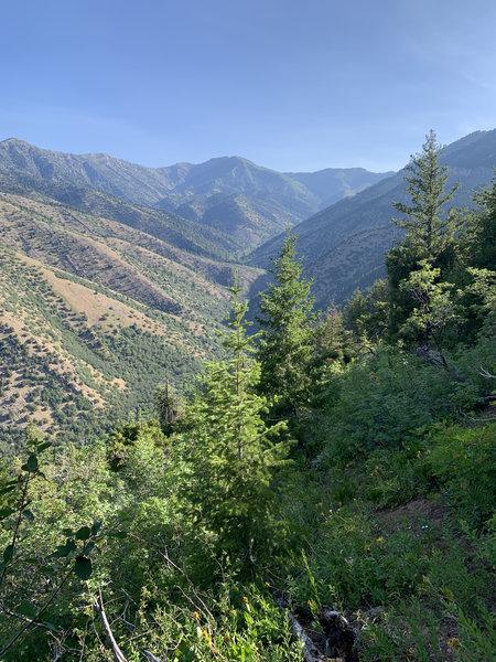 Views of Green Canyon.