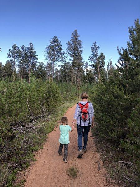Beaver Creek Trail #732