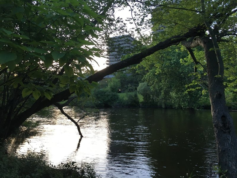 Looking across Huron River towards Huron Towers Apartments.