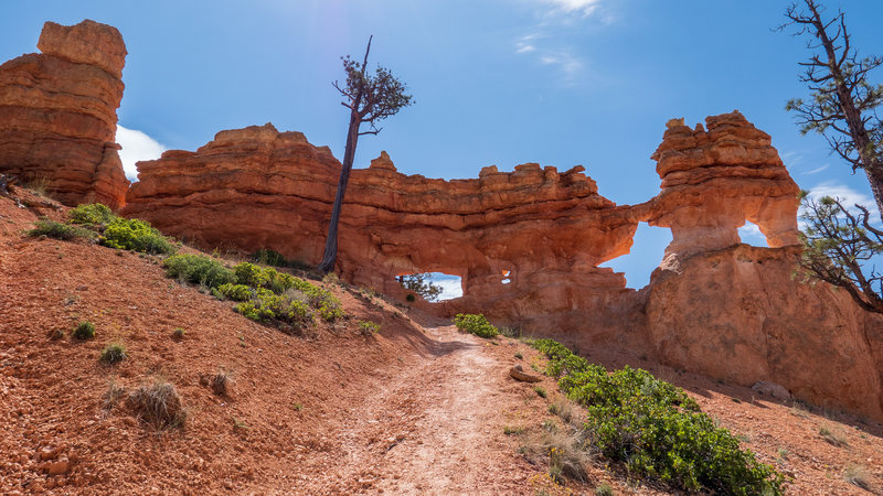 The steep trail leads to Little Windows.