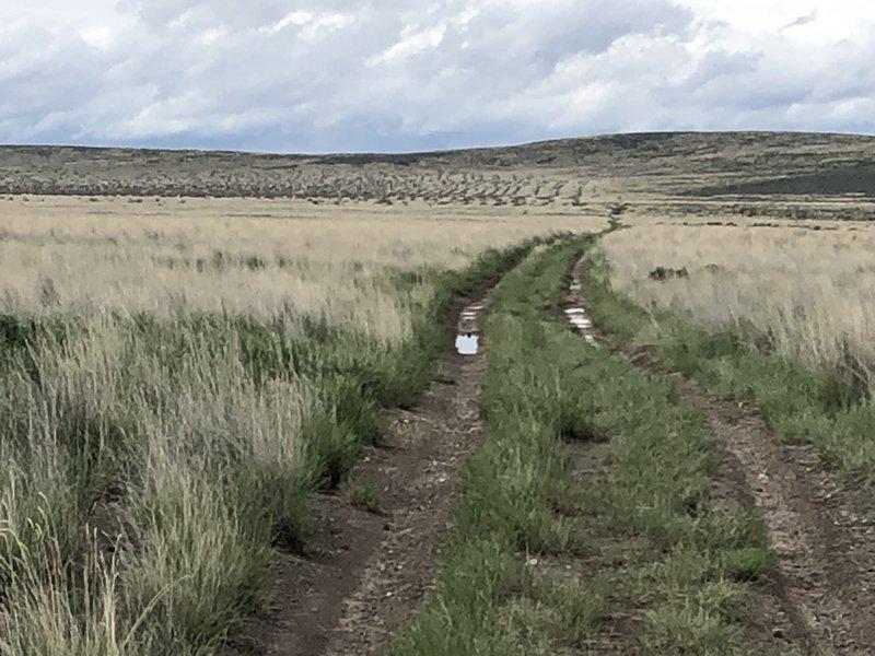 Idaho Centennial Trail - looking south.