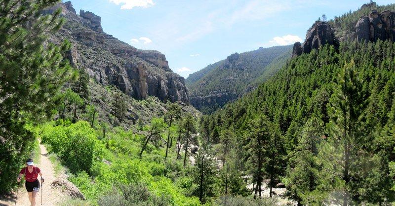 Tongue River Canyon