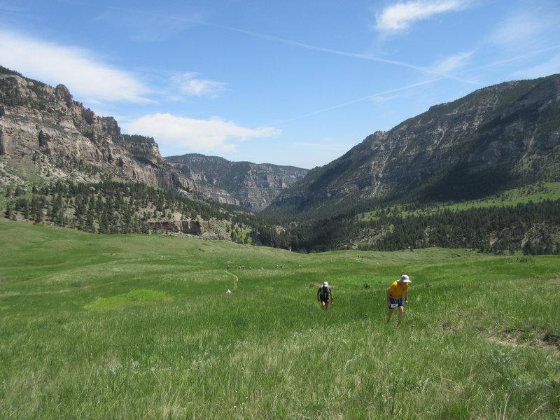 Climbing up Horse Ridge out of Tongue River Canyon