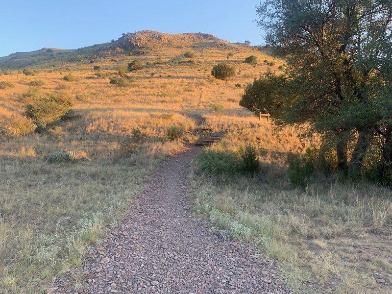 Start of Montezuma Quail Trail.