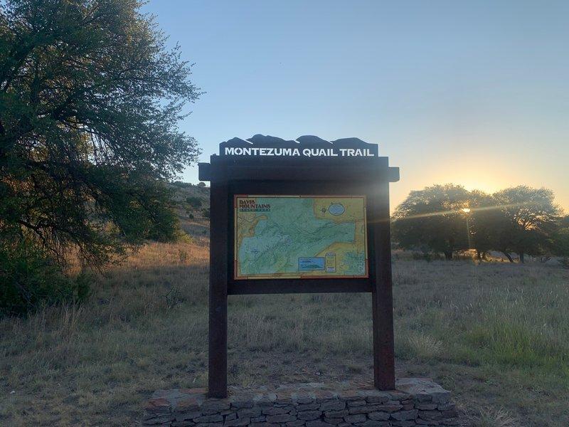 Montezuma Quail Trail start.