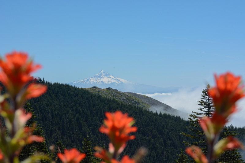Mt Hood from Sturgeon Rock