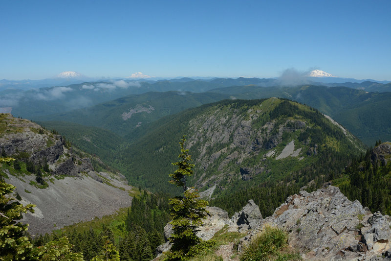 L-R: Mt St Helens, Mt Rainier, Goat Rocks, and Mt Adams