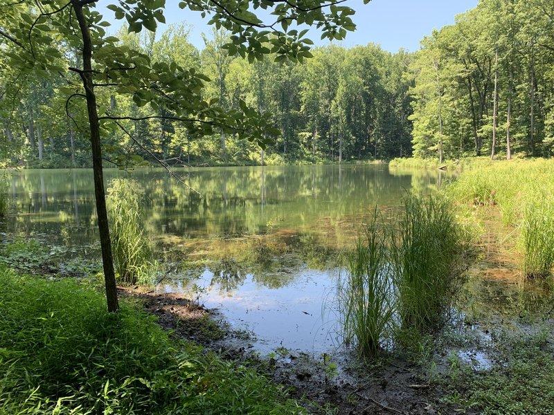 Ragged Mountain Reservoir Lake