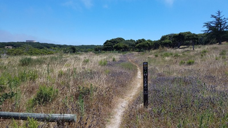 Fort Ord National Monument Trail 69 at Hennekens Ranch Rd