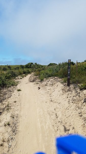 Fort Ord National Monument Trail 70