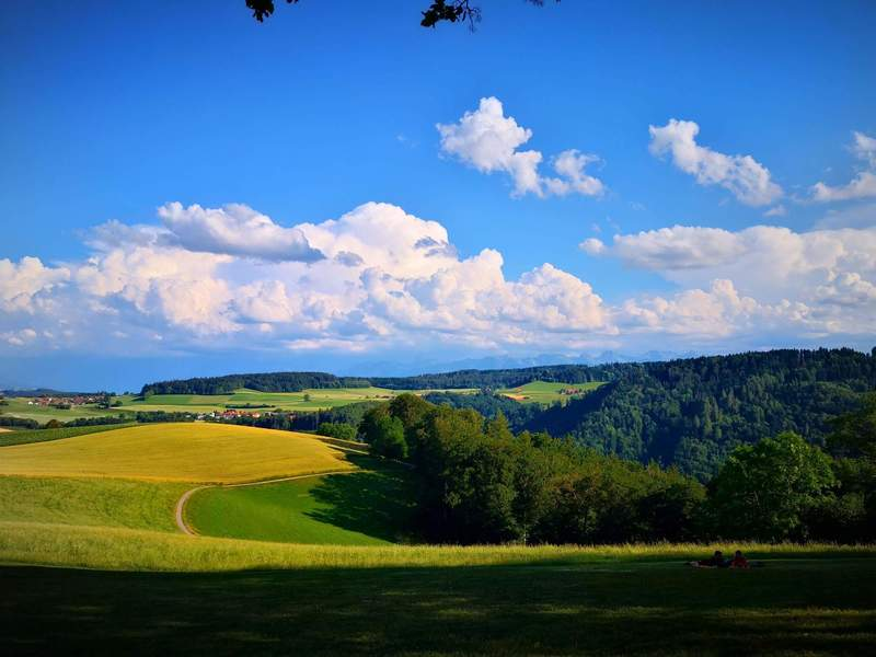 Gurten Kulm - View of the fields and alps in the background