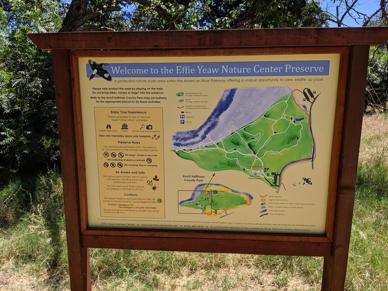 Trail map at Effie Yeaw Nature Center.