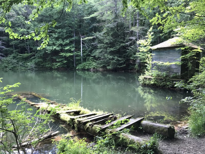 The dock at Monk Pond.