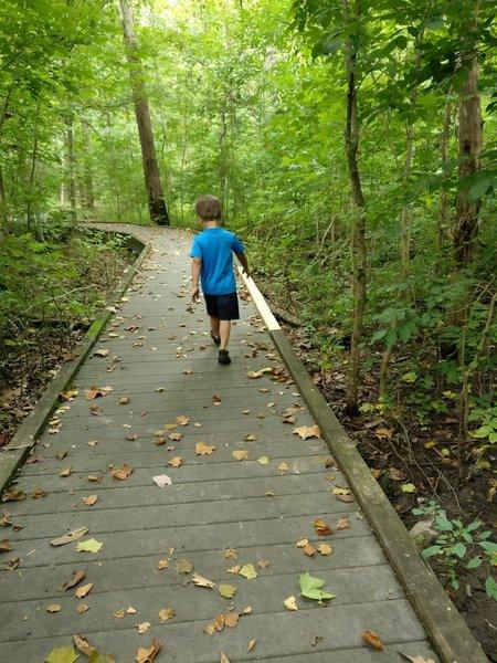 The Wetlands Boardwalk