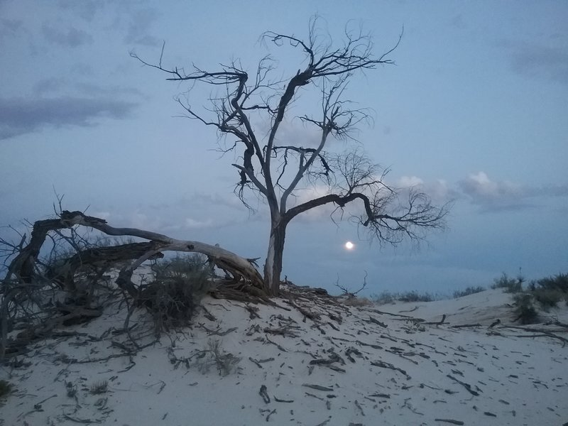 Full moon during our full moon hike