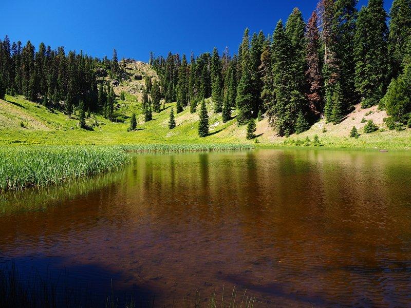 Hinkle Lake