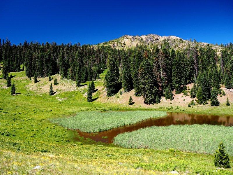 Arnold Mountain above Hinkle Lake