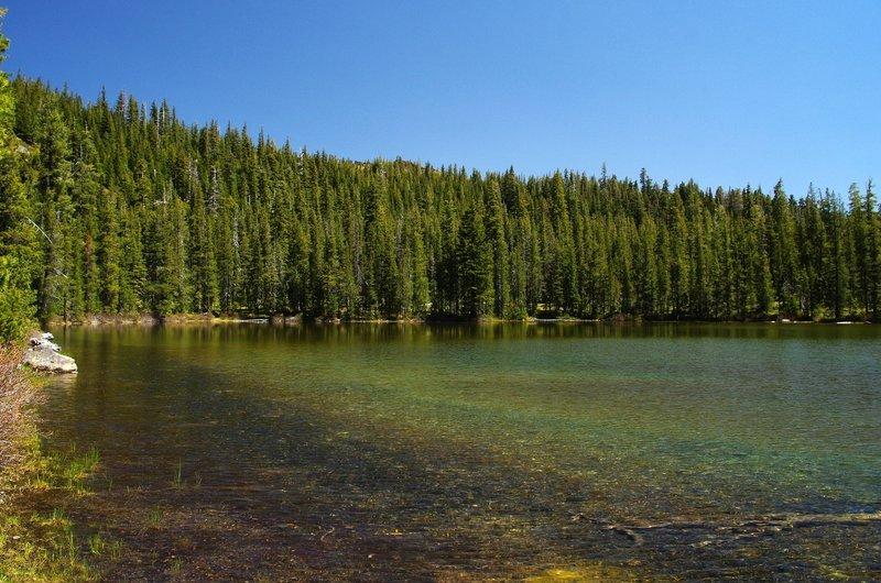 Azalea Lake in 2014
