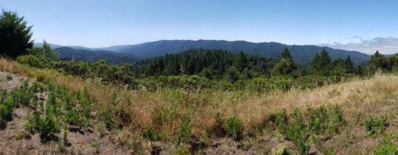Overlook of the County Park.