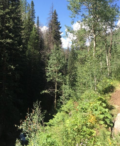 Two Elk is narrow, technical, and has a very steep drop (> 30') to the creek below.