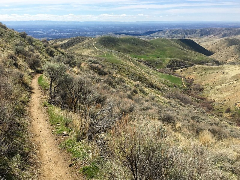 Scott's Trail descends beautifully toward the Miller Gulch Trailhead from 8th Street Road.