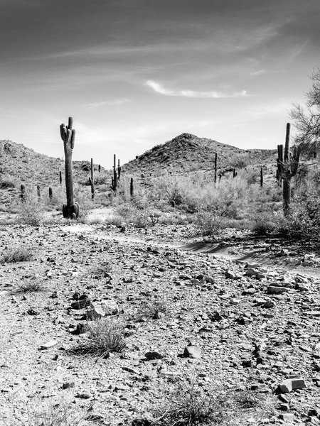 South Mountain, Arizona 8