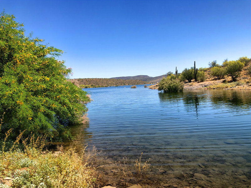 View of Lake Pleasant.