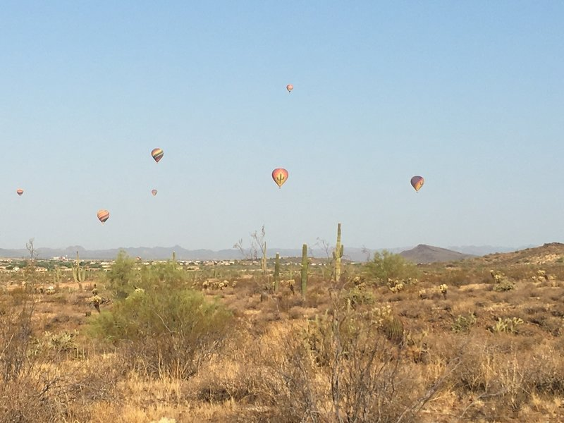 Balloons on a September morning at Ocotillo Trail.