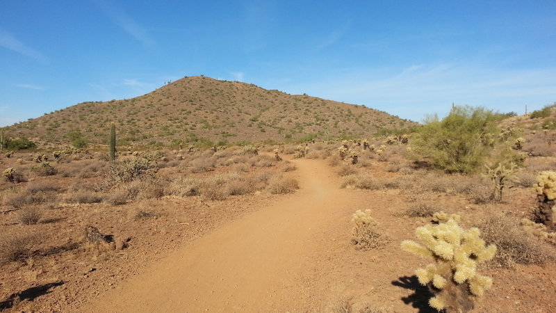 Start of Ocotillo trail - heading west.