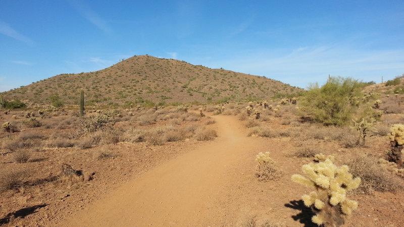Start of Ocotillo trail - heading west.