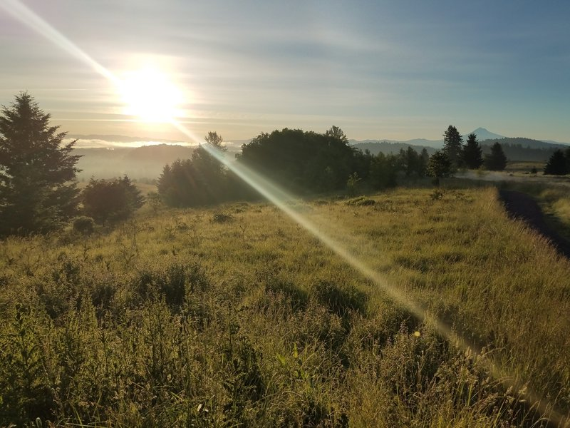 Sunrise at Powell Butte