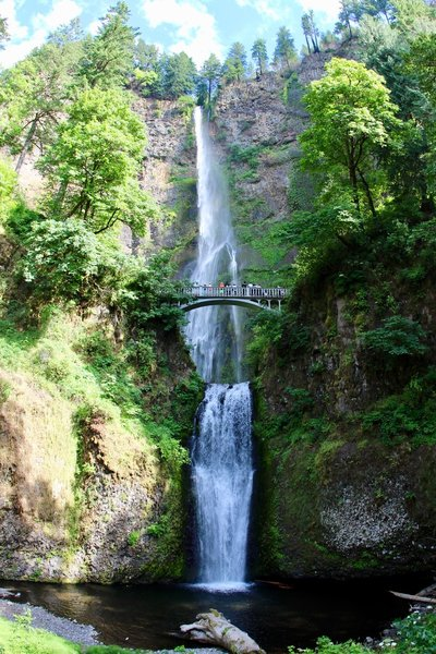 Full view of Multnomah Falls.