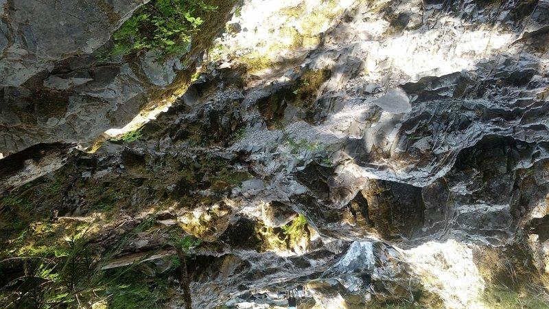 Kopetski / Opal Creek Trail