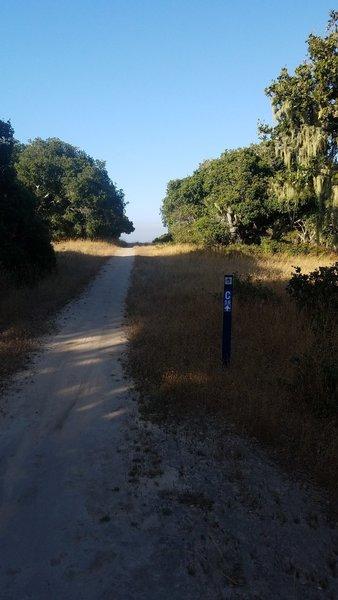 Monterey County Trail 56