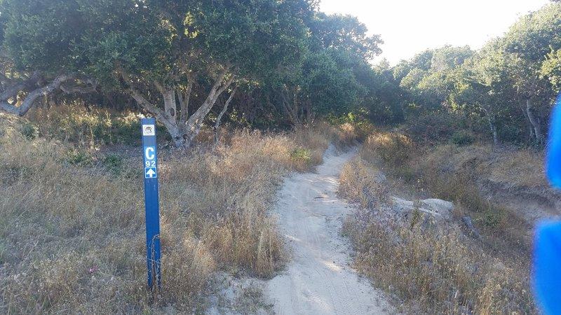 Monterey County Trail 92