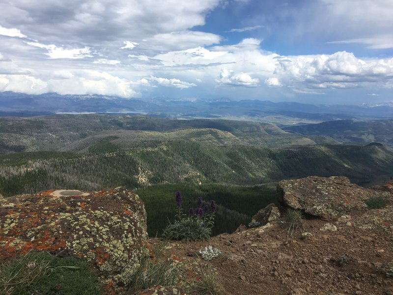 At the top of Elk Mountain - gorgeous views up here