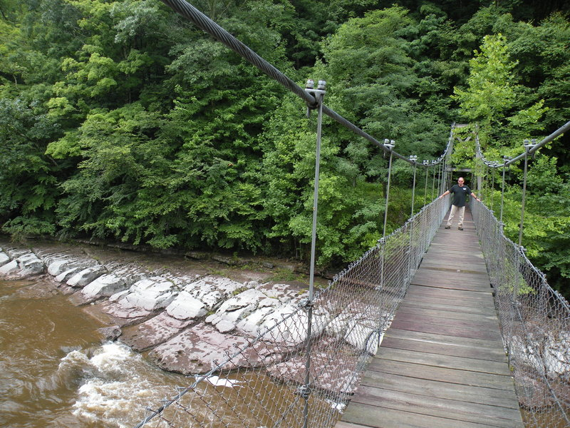 Feeling the natural sway of the bridge in a summer breeze and contemplating whether the rocks below or planks above are more slick.